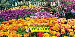Productos ASOCOA